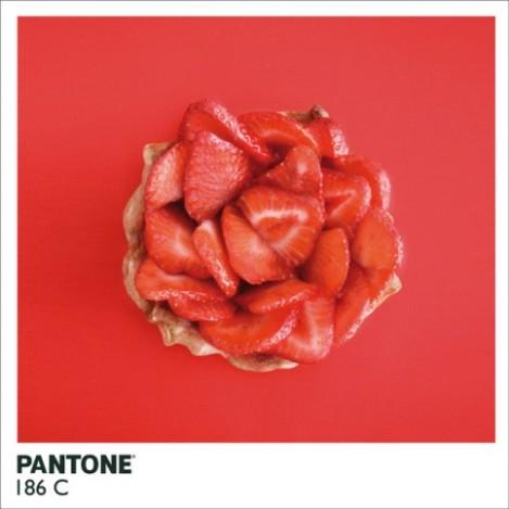 pantonefood-1-483x483