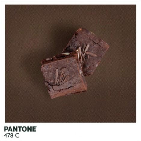 pantonefood-3-483x483