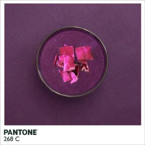 pantonefood-5-483x483