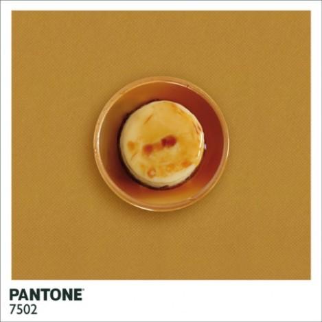 pantonefood-6-483x483