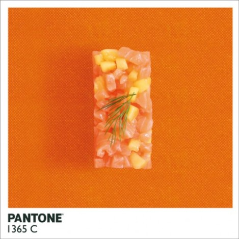 pantonefood-8-483x483