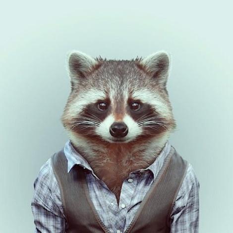 Zoo-Portraits-Modelos-animais-bem-legaus-10
