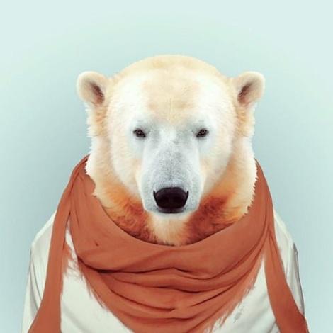 Zoo-Portraits-Modelos-animais-bem-legaus-6